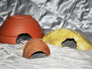 A range of hides that are suitable for use by your Grey-Banded King Snake